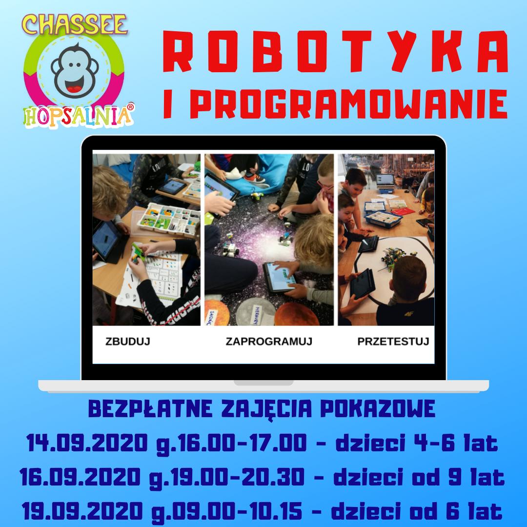 Robotyka - Hopsalnia